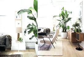 apartment herb garden. Indoor Apartment Garden Herb