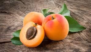 Bildergebnis für aprikosen