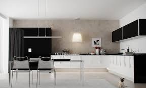 black white kitchen decor ideas 9