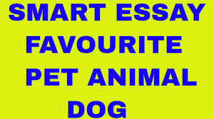 essay on my favourite pet animal dog  essay on my favourite pet animal dog