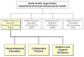 Who Who Study Group On Interprofessional Education And