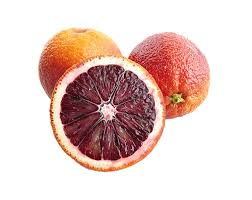 نهال پرتقال توسرخ کشیده اسپانیایی پیوندی دوساله – فردین کشت