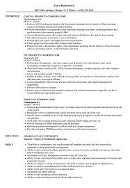 Projects Coordinator Resume Samples Velvet Jobs