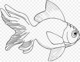 drawing fish coloring book clip art ikan koi