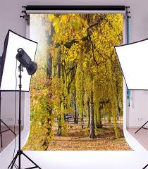 Hd outdoor backgrounds Bokeh Details About Outdoor Park Trees Photography Backgrounds 5x7ft Vinyl Hd Photo Studio Backdrops Ebay Outdoor Park Trees Photography Backgrounds 5x7ft Vinyl Hd Photo