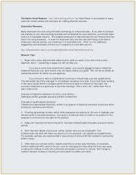 Resume Sample Summary Statement Perfect Job Resume Objective