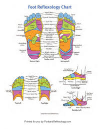 Foot Reflexology Foot Hand And Ear Reflexology In Portland