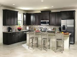 euro style rta kitchen cabinets redesign euro style kitchen cabinets elegant kitchen cabinets euro style rta
