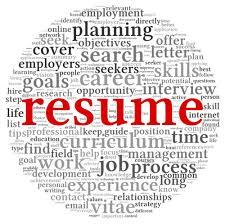Fine The Resume Writer S Workbook Ideas Documentation Template