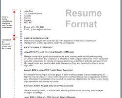 best technical resume format cipanewsletter best technical resume format over 10000 cv and resume