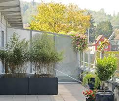 Bambus Als Sichtschutz F R Terasse Und Balkon Bambus Und Hoher Sichtschutz Durch Pflanzen