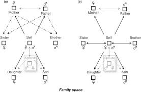 Kinship Relation An Overview Sciencedirect Topics