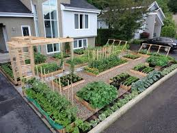 container gardening vegetables. Container Gardening Vegetables Patio Vegetable Garden Ideas Beginners In India And Herbs