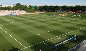 Grass IS Taking More On Pro Soccer Field of the Year Growing