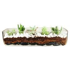 long glass vase 4 long rectangular glass vase planter tall glass vase ideas long glass vase