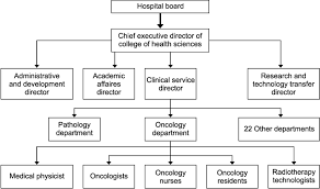 Executive Hierarchy Chart A Flow Chart Depicting A Hierarchy Of The Organization And