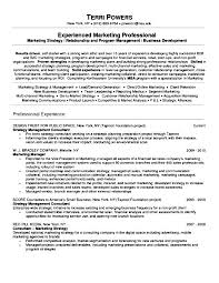 Best Executive Resume Writers Llun Magnificent Local Resume Services