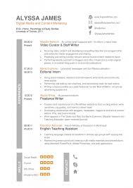 American Format Resume 69 Images Cv Language Skills Fluent How
