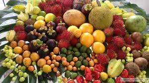 Tropical Fruit Available In Puerto Rico Puerto Rico Day