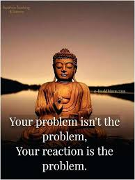 Buddha Quotes On Life Unique Buddha Quotes On Life Your Reaction Is The Problem Quote Buddha