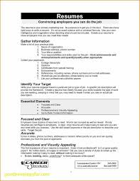 What To Write In Profile On Resume Contact Information On Resume Professional Profile Resume