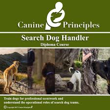 search dog handler accredited diploma course canine principles search dog handler diploma course