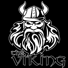 Image result for viking