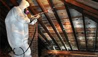 attic mold remediation cost. Modren Remediation Mold Removal Services With Attic Remediation Cost J