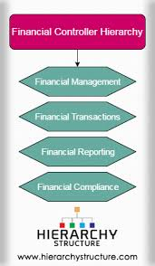 Department Of Finance Organisation Chart Financial Controller Hierarchy Finance Department