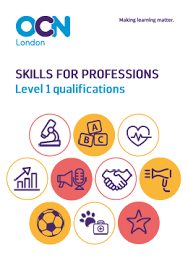skills and qualifications skills for professions