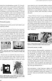 Üç boyutlu yazıcılar ve çocuk cerrahisi - PDF Ücretsiz indirin