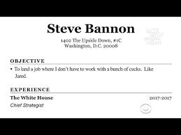 Steve Bannon Resume