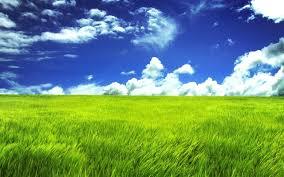 green grass field. 30 Greenish Examples Of Green Wallpapers Grass Field R