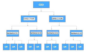 free downloadable organizational chart template free editable organizational chart template company hierarchy