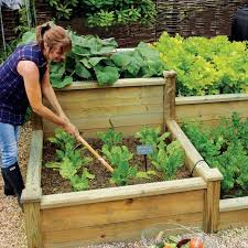 linked raised beds