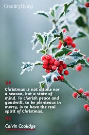 Christmas Spirit Quotes Best 48 CHRISTMAS QUOTES THAT PERFECTLY CAPTURE THE SPIRIT OF THE SEASON
