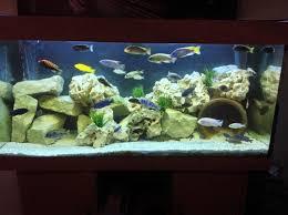 stacking rocks in your aquarium