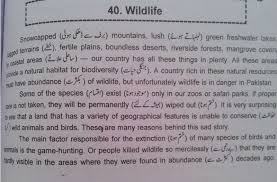 preservation of wildlife essay denali national park and preserve  wild life essay in english for primary to higher classes 2017 essay on save wildlife 150
