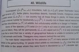 wild life conservation essay wild life essay in english for wild life essay in english for