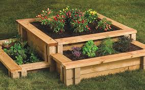 a raised garden bed with vegetables planted in it