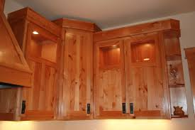 Wood Veneer For Cabinets Exotic Kitchen Cabinets
