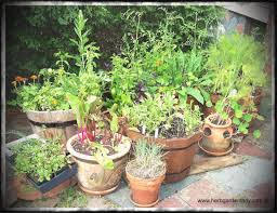 how to start a small garden. How To Start A Small Herb Garden Absolutely Ideas Planter Home Outdoor Decoration Fearless Gardener