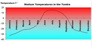 Temperature In The Tundra Eniscuola