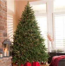 Christmas deals, tree sale, pre-lit best after Clearance up to 75% off! Pre-lit 7.5\u0027 Tree $250 | A