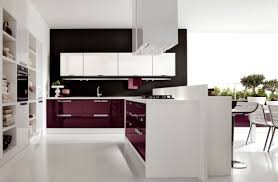 Furniture In Kitchen Fascinating Purple Kitchen Ideas With High Gloss Kitchen Cabinets