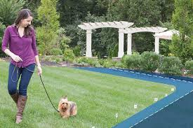 best invisible dog fences for the yard