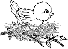 Small Picture Birds And Their Nests Coloring Coloring Pages