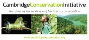 Species Diversity Definition 7 Impacts Of Climate Change On Biodiversity And Ecosystem Services