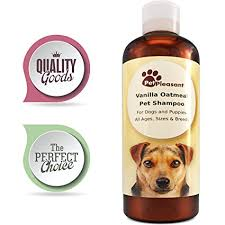 Amazon.com: Colloidal Oatmeal Shampoo for Dogs with Sensitive Skin ...
