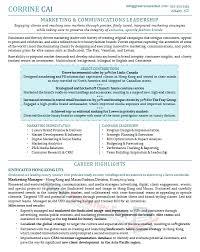 Executive Resume Samples Resume Templates